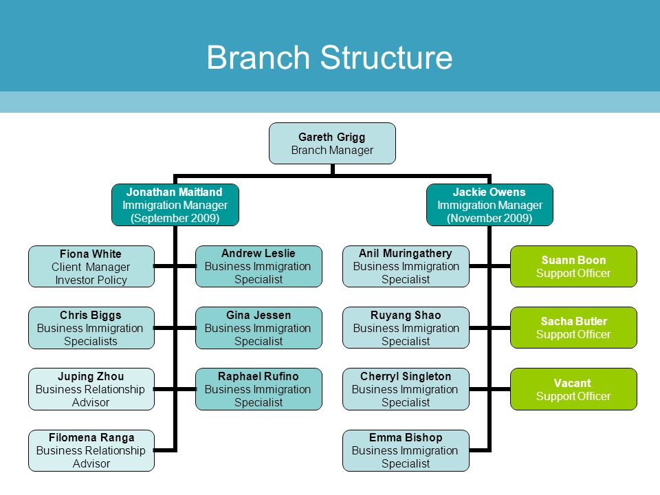 Branch Structure