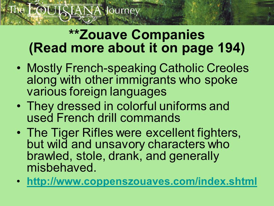 **Zouave Companies (Read more about it on page 194)