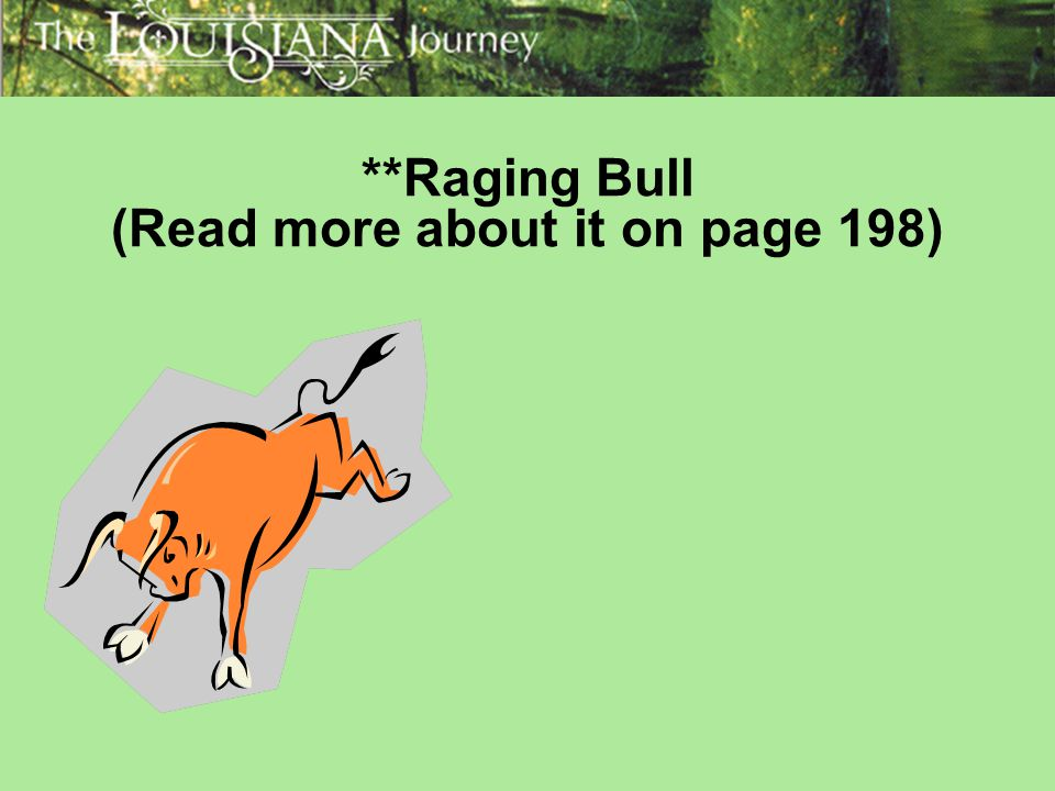 **Raging Bull (Read more about it on page 198)