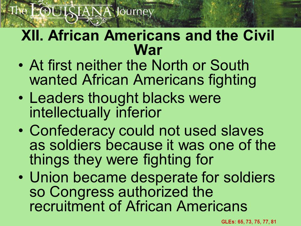 XII. African Americans and the Civil War