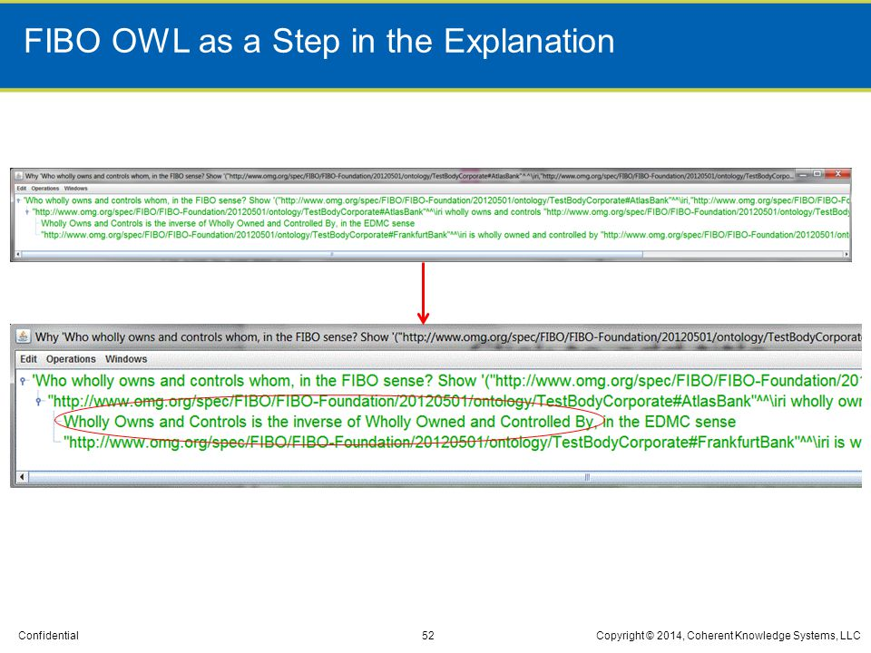 FIBO OWL as a Step in the Explanation