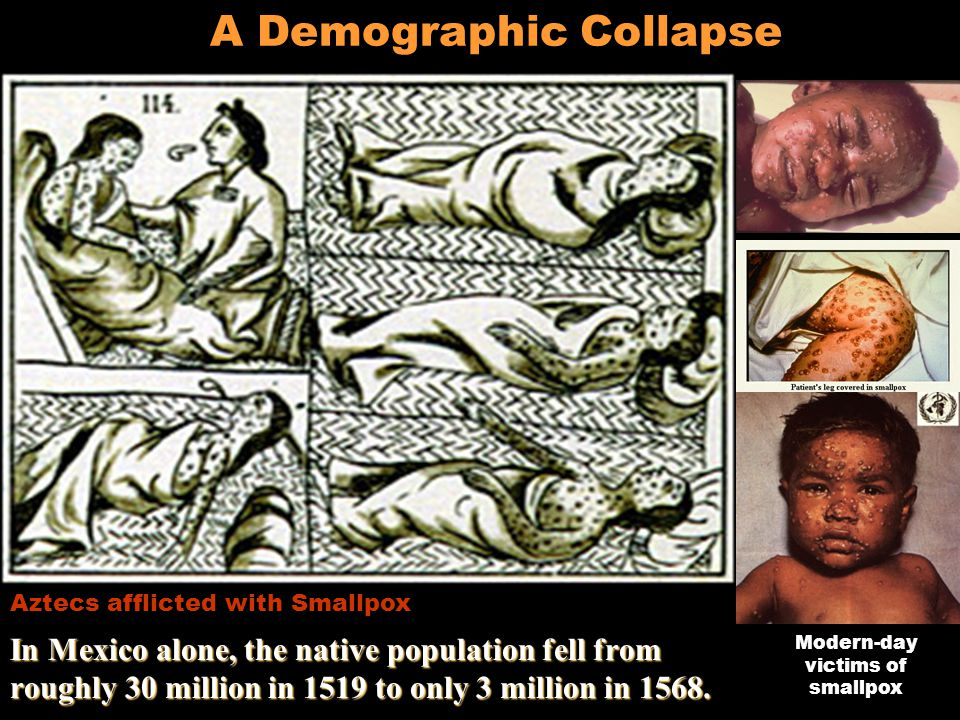 A Demographic Collapse