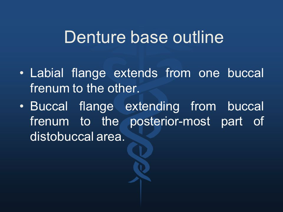 Denture base outline Labial flange extends from one buccal frenum to the other.
