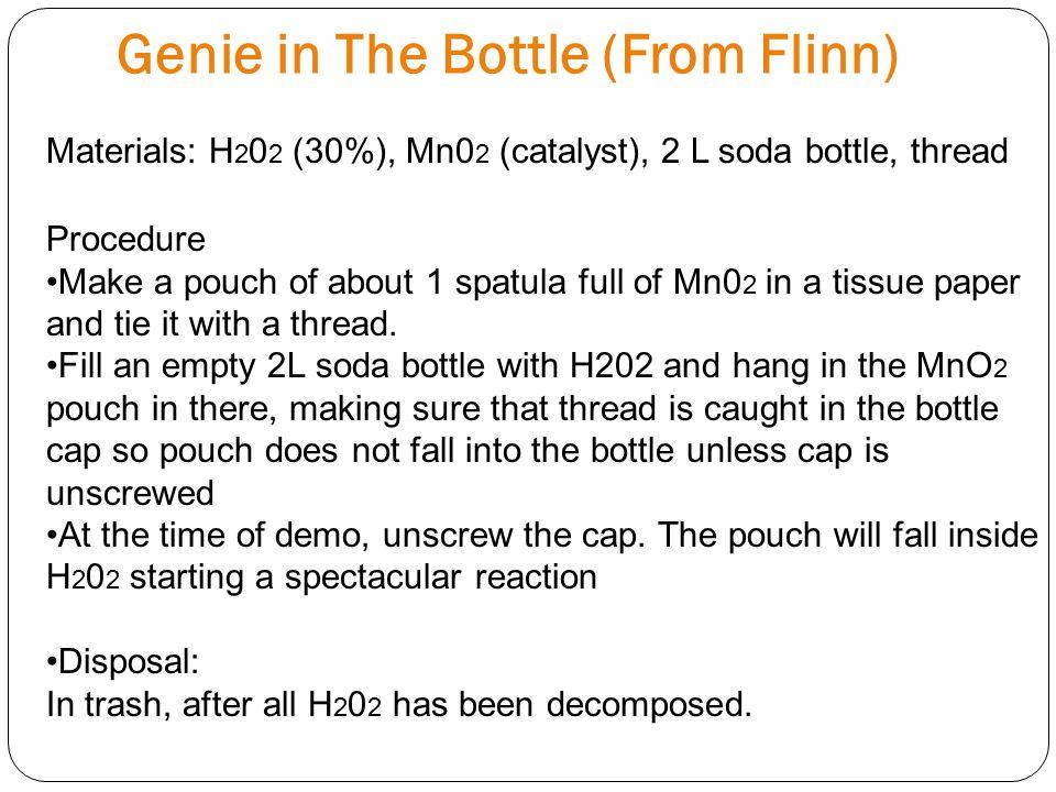 Genie in The Bottle (From Flinn)