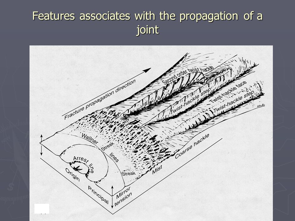 Features associates with the propagation of a joint