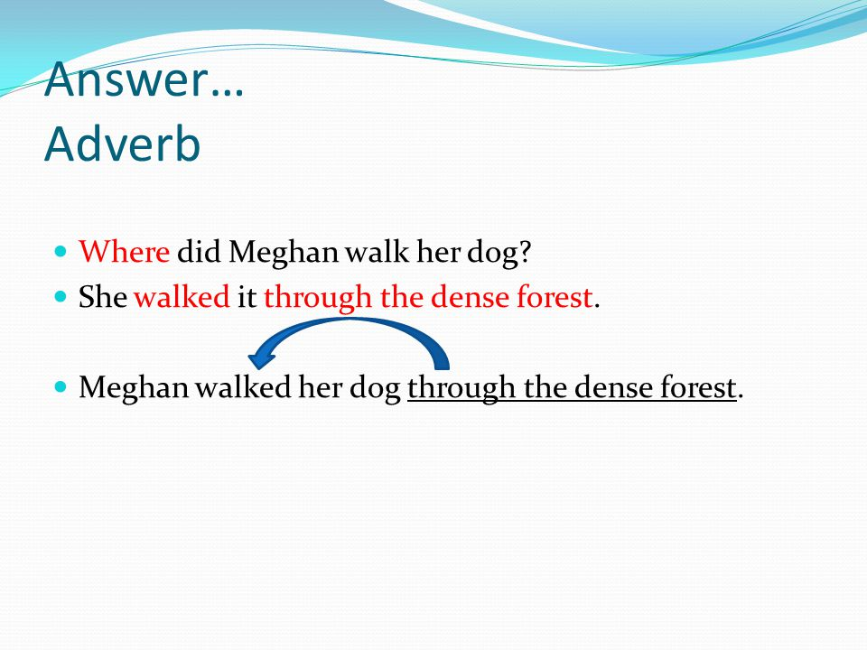Answer… Adverb Where did Meghan walk her dog