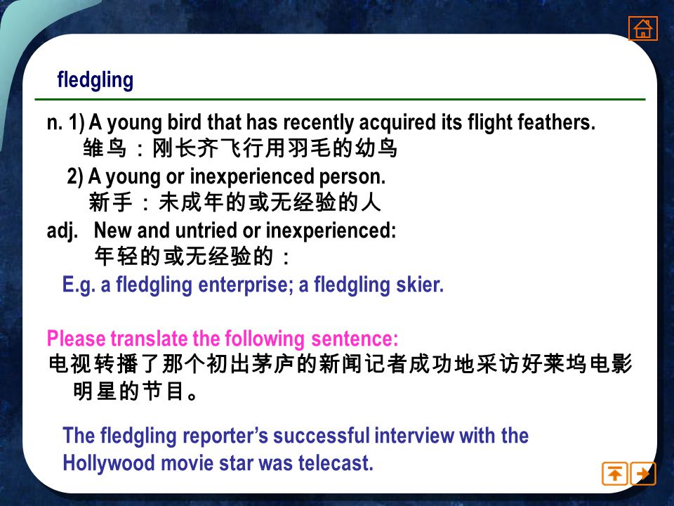 fledgling n. 1) A young bird that has recently acquired its flight feathers. 雏鸟:刚长齐飞行用羽毛的幼鸟. 2) A young or inexperienced person.