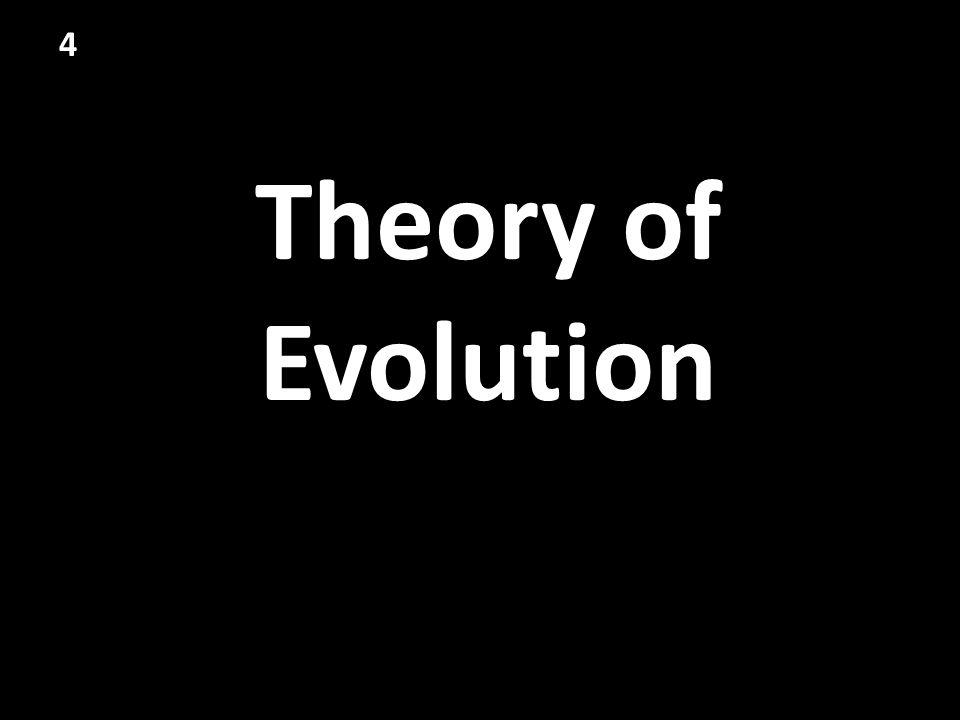 4 Theory of Evolution