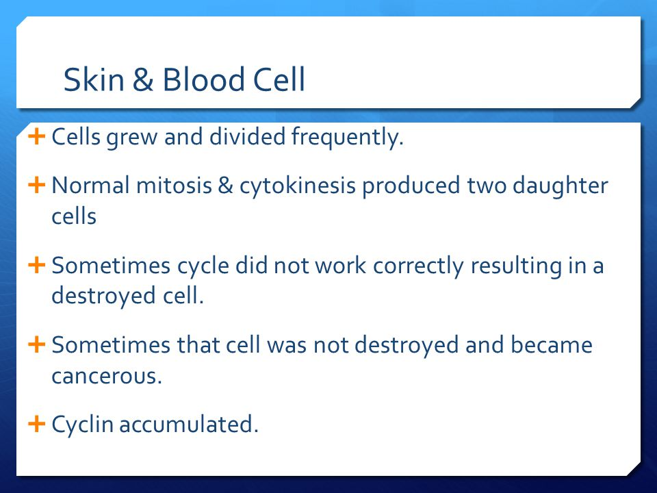 Skin & Blood Cell Cells grew and divided frequently.