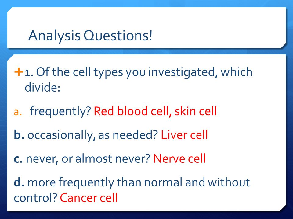 Analysis Questions! 1. Of the cell types you investigated, which divide: frequently Red blood cell, skin cell.