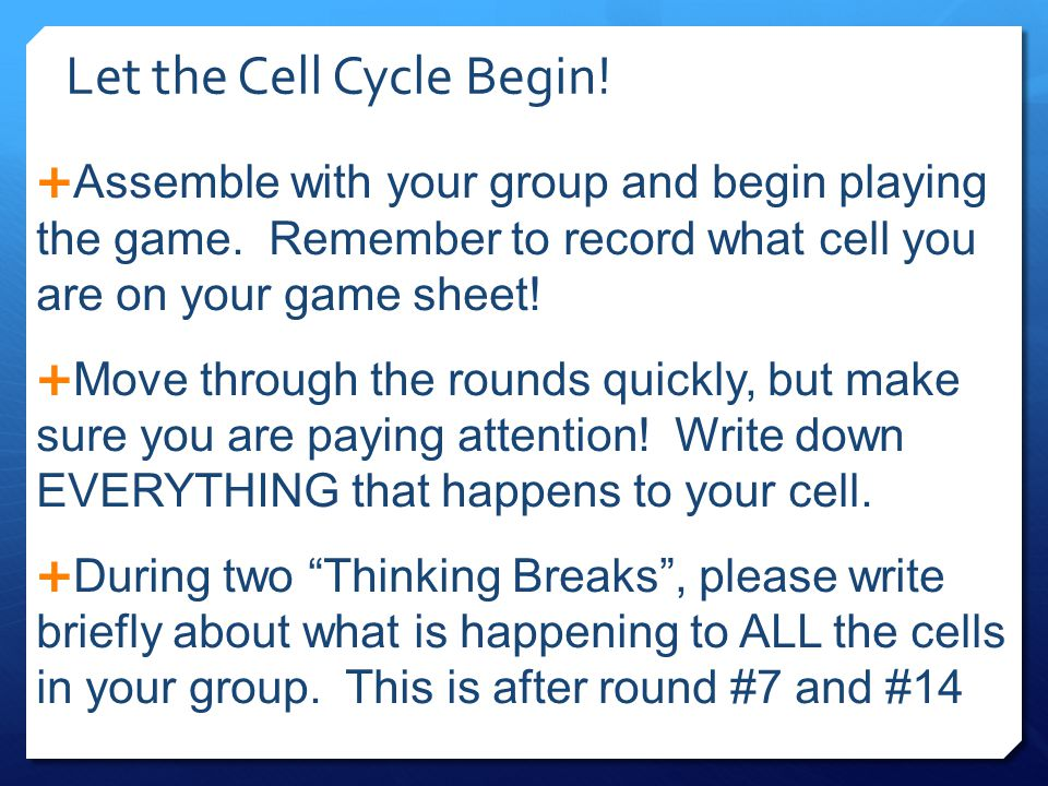 Let the Cell Cycle Begin!