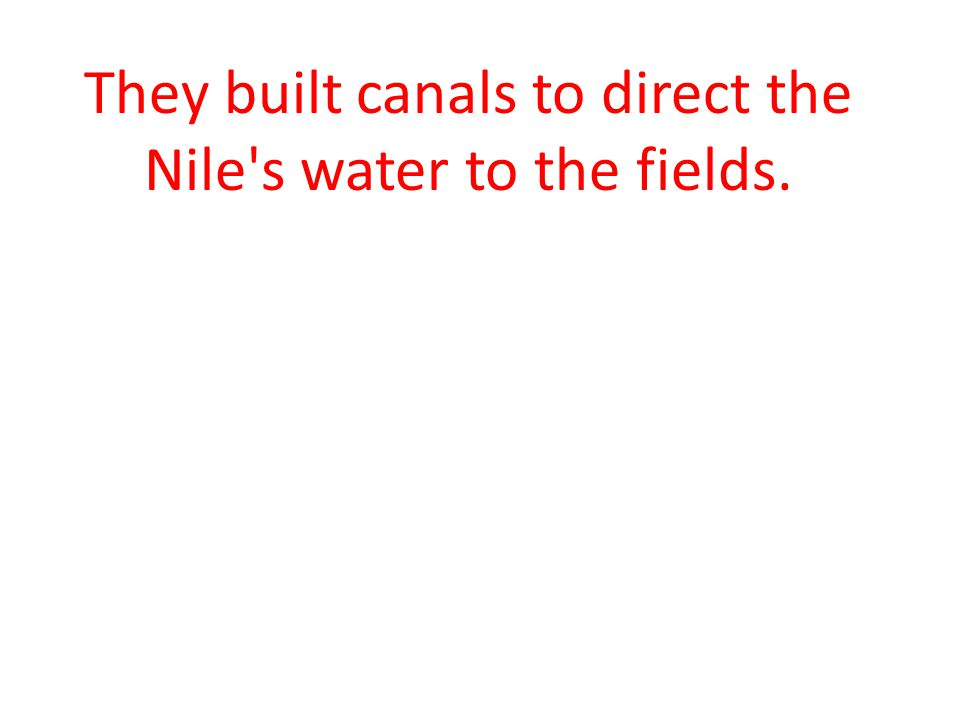 They built canals to direct the Nile s water to the fields.