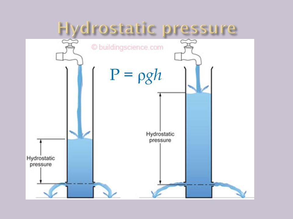 Hydrostatic pressure P = ρgh