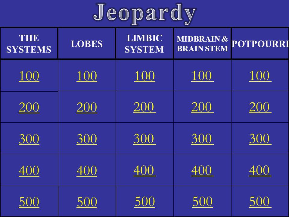 Jeopardy Eleanor M. Savko. 4/12/2017. THE. SYSTEMS. LOBES. LIMBIC. SYSTEM. MIDBRAIN & BRAIN STEM.