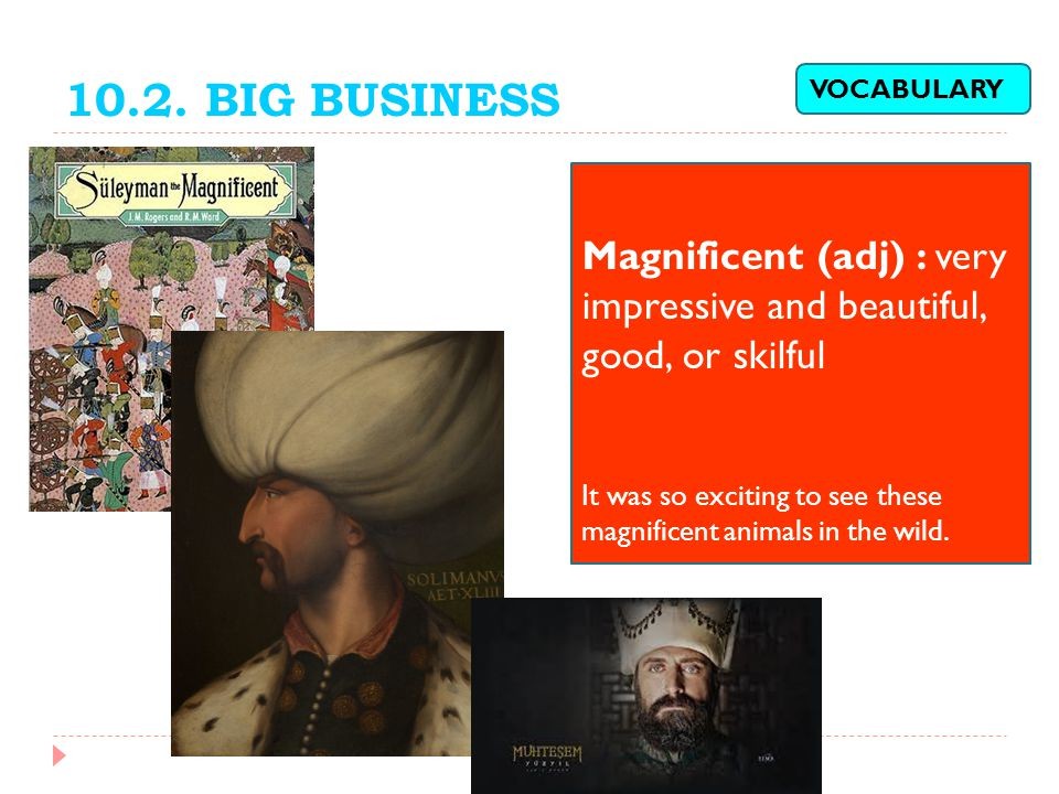 10.2. BIG BUSINESS VOCABULARY. Magnificent (adj) : very impressive and beautiful, good, or skilful.