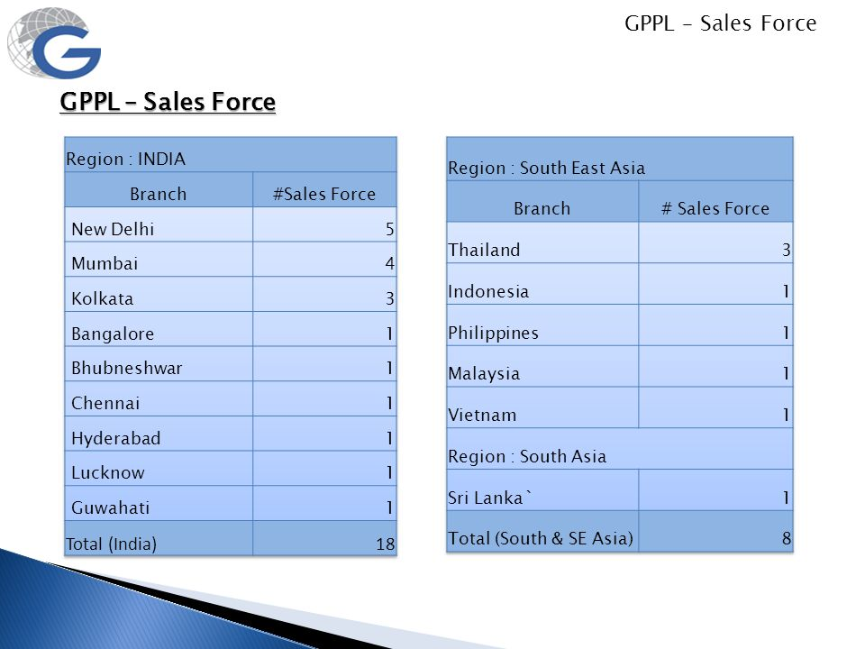 GPPL – Sales Force GPPL – Sales Force Total (India) 18 Region : INDIA