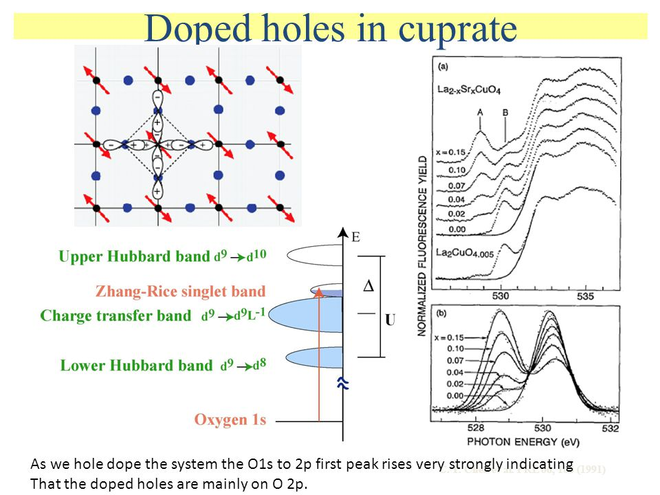 Doped holes in cuprate As we hole dope the system the O1s to 2p first peak rises very strongly indicating.
