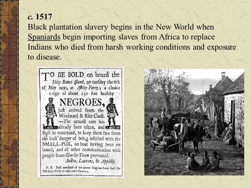 c. 1517 Black plantation slavery begins in the New World when Spaniards begin importing slaves from Africa to replace