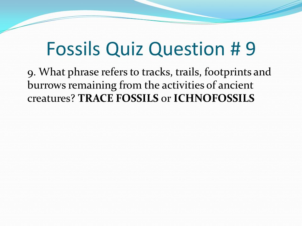 Fossils Quiz Question # 9