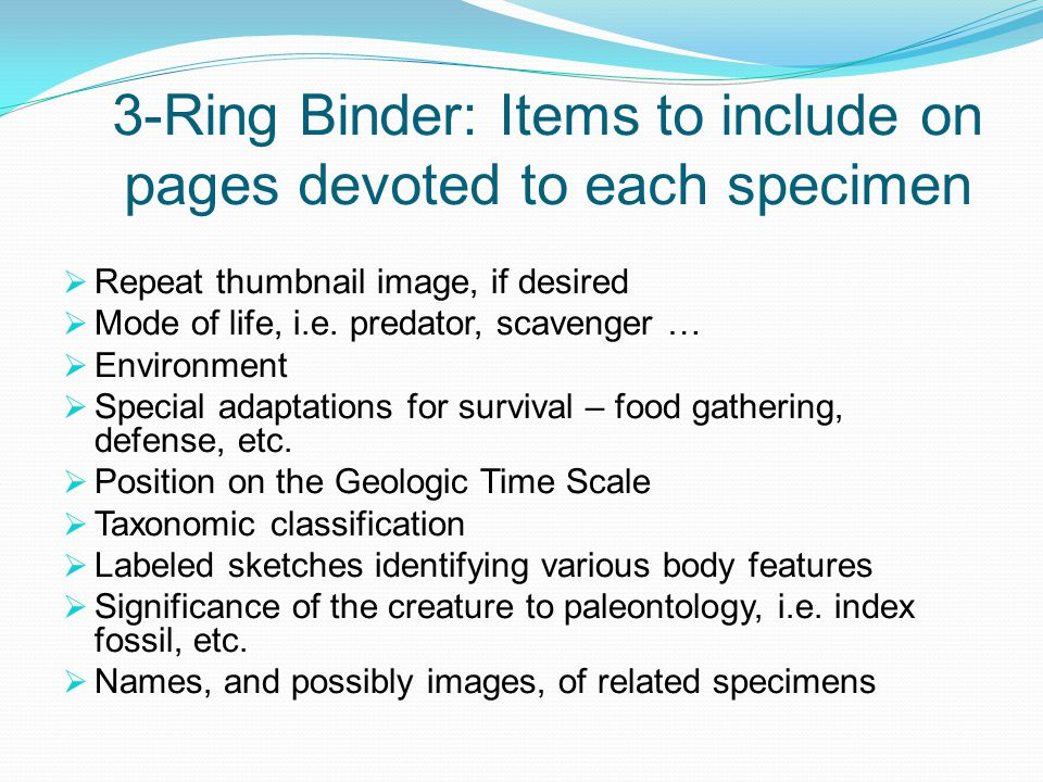 3-Ring Binder: Items to include on pages devoted to each specimen
