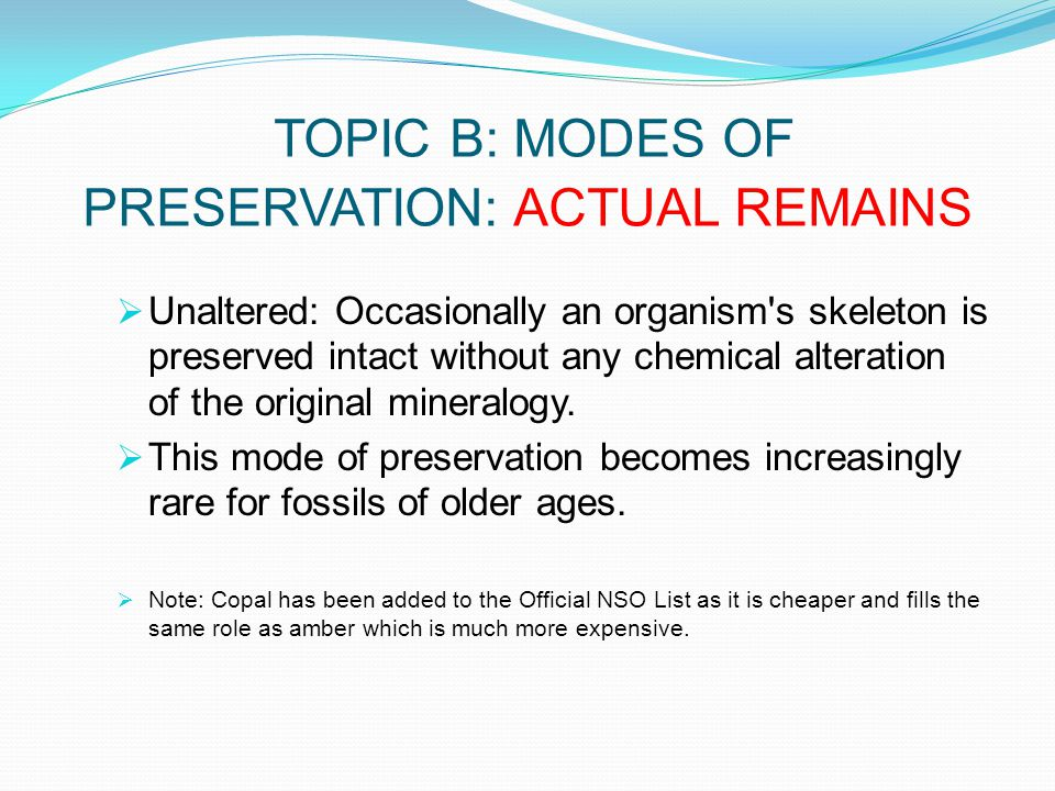 TOPIC B: MODES OF PRESERVATION: ACTUAL REMAINS