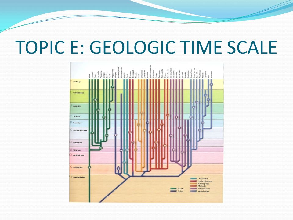 TOPIC E: GEOLOGIC TIME SCALE