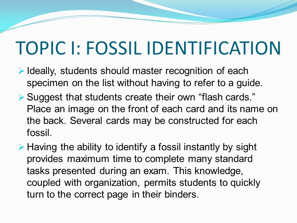 TOPIC I: FOSSIL IDENTIFICATION
