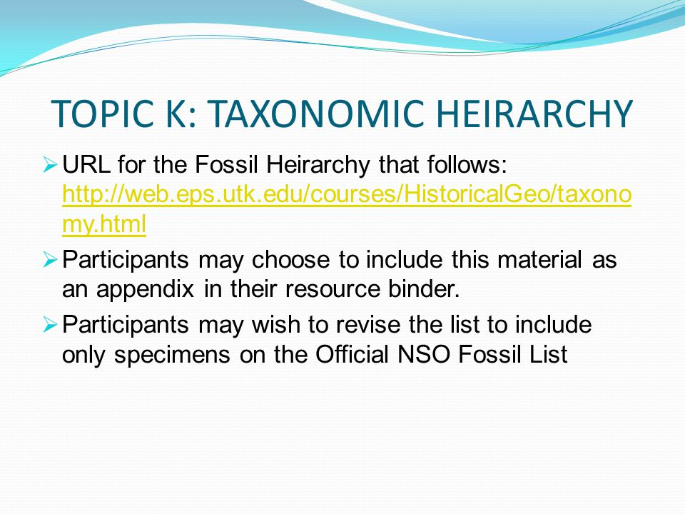 TOPIC K: TAXONOMIC HEIRARCHY