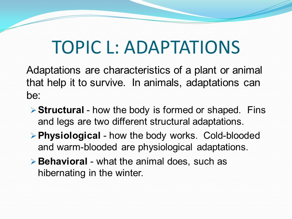 TOPIC L: ADAPTATIONS Adaptations are characteristics of a plant or animal that help it to survive. In animals, adaptations can be:
