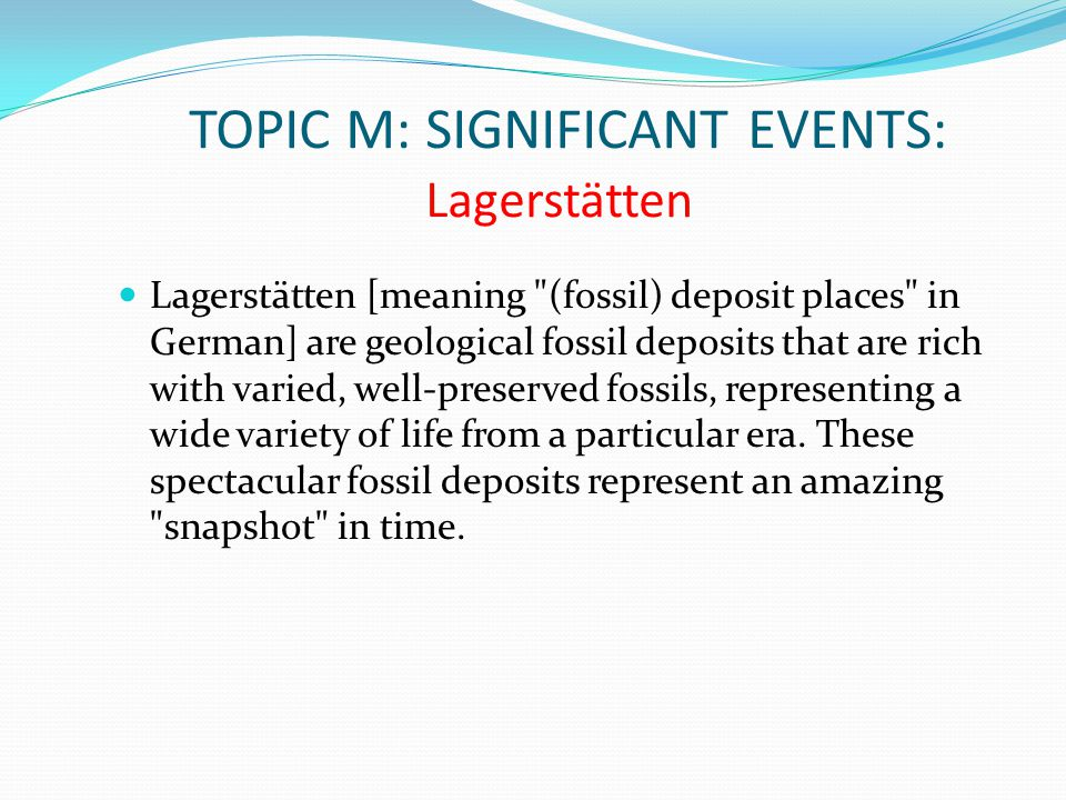 TOPIC M: SIGNIFICANT EVENTS: Lagerstätten