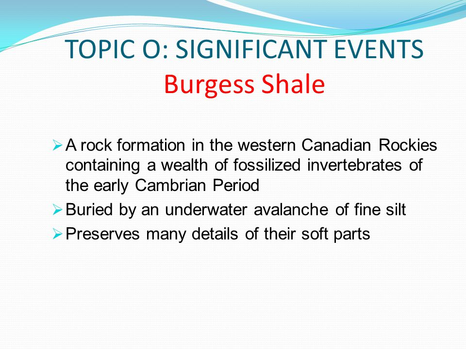 TOPIC O: SIGNIFICANT EVENTS Burgess Shale