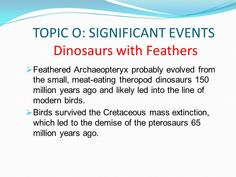 TOPIC O: SIGNIFICANT EVENTS Dinosaurs with Feathers