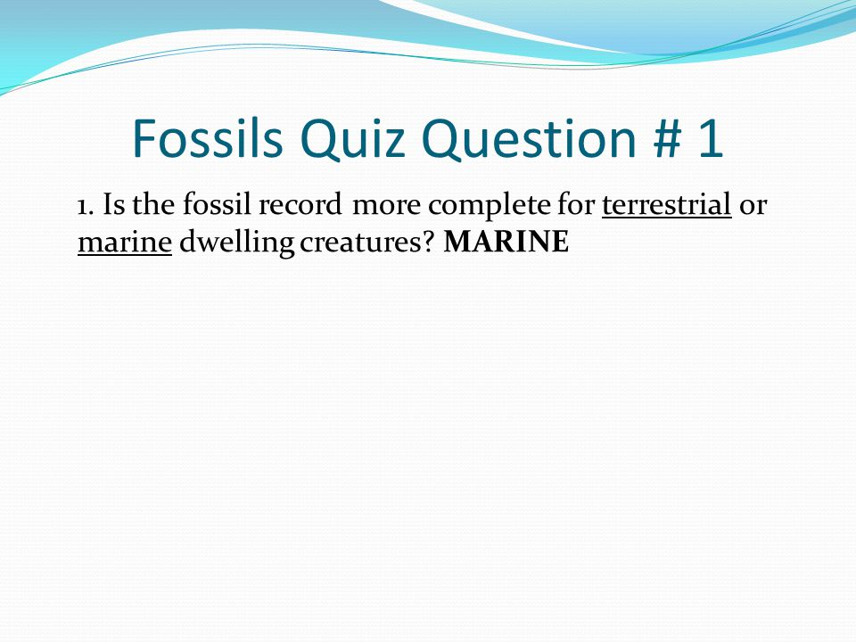 Fossils Quiz Question # 1