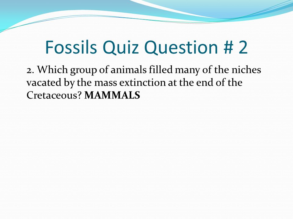 Fossils Quiz Question # 2