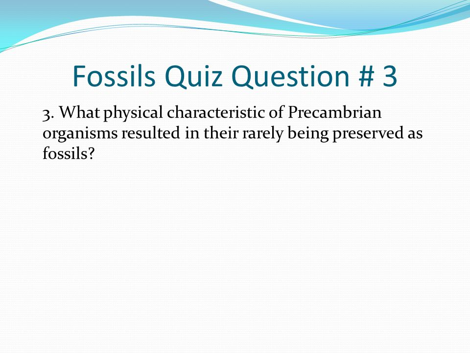 Fossils Quiz Question # 3