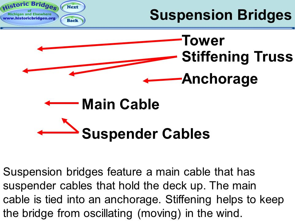 Suspension Bridges - Terms