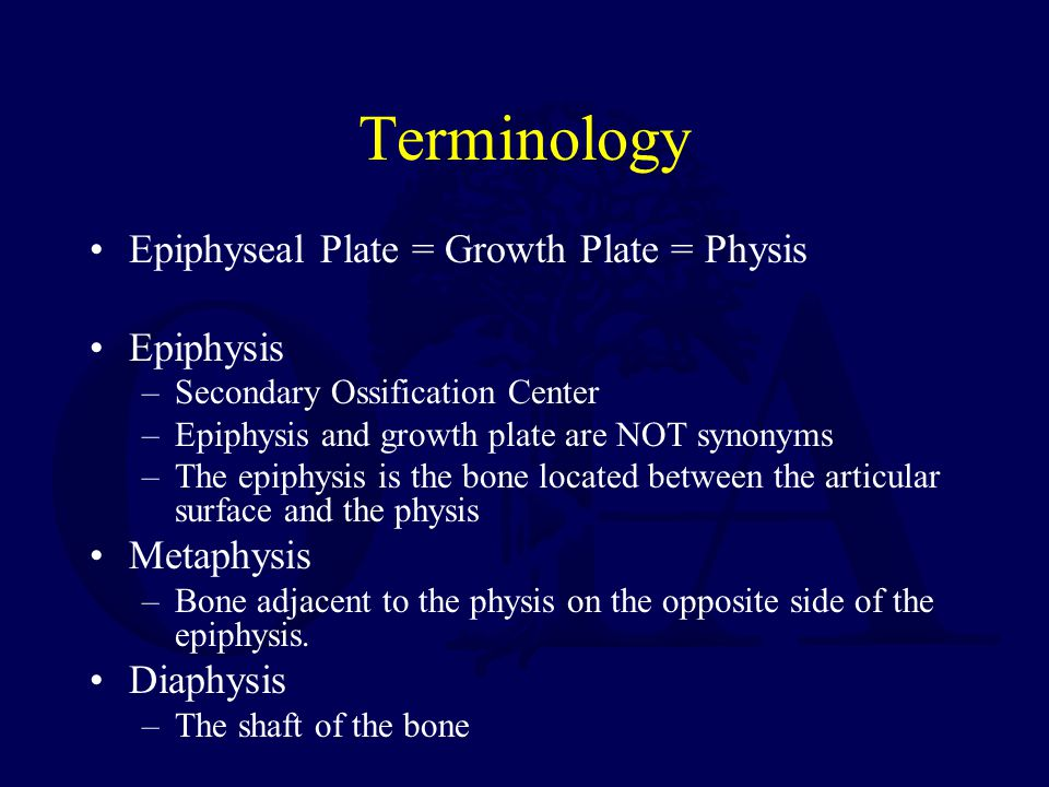 Terminology Epiphyseal Plate = Growth Plate = Physis Epiphysis