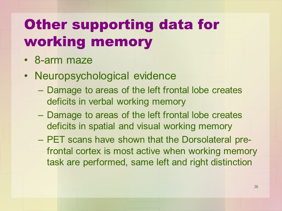 Other supporting data for working memory