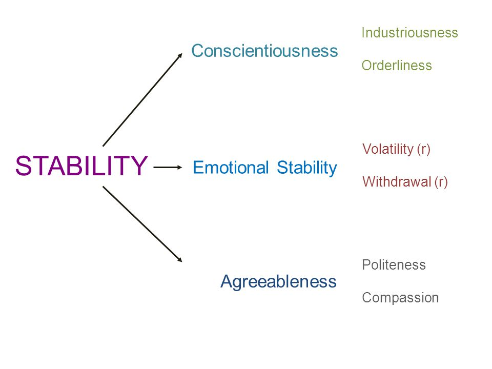 STABILITY Conscientiousness Emotional Stability Agreeableness