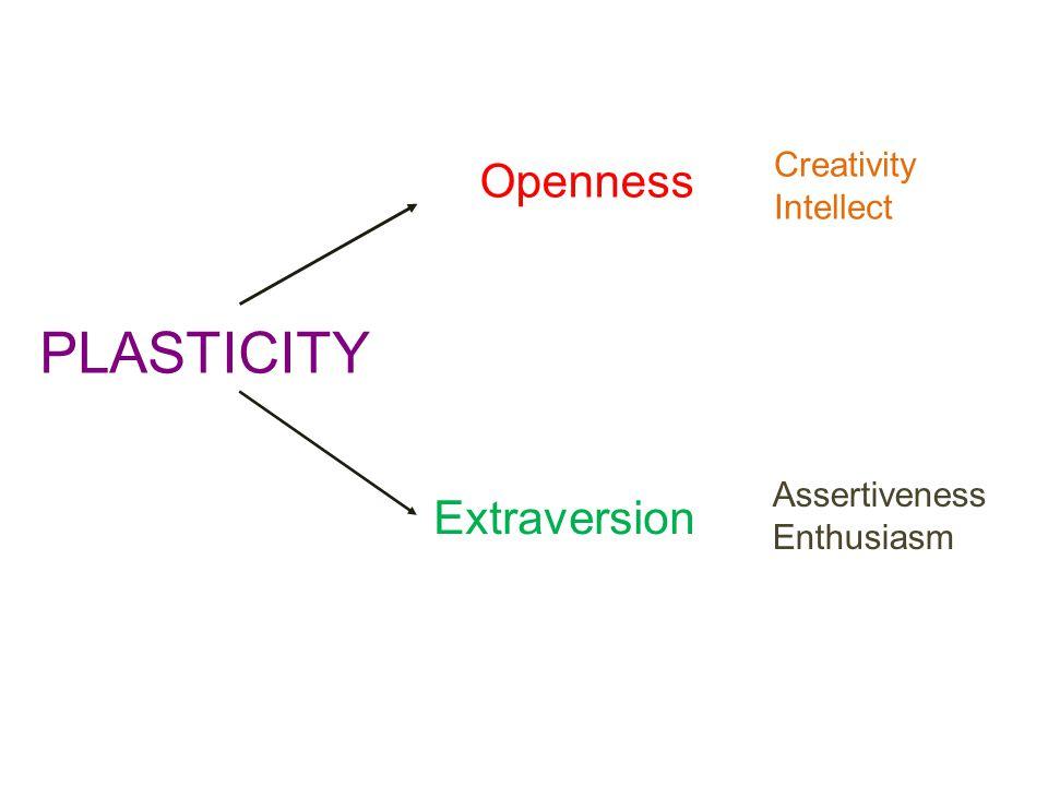 PLASTICITY Openness Extraversion Creativity Intellect Assertiveness