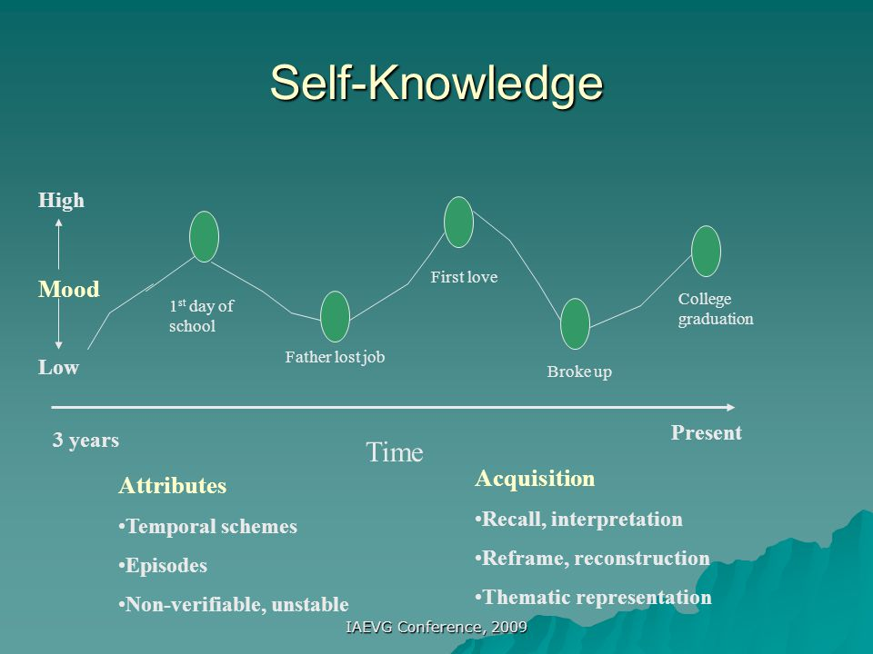 Self-Knowledge Time Mood Acquisition Attributes High Low Present