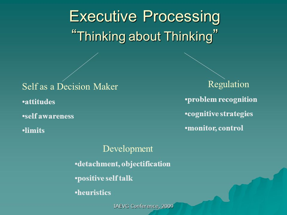 Executive Processing Thinking about Thinking