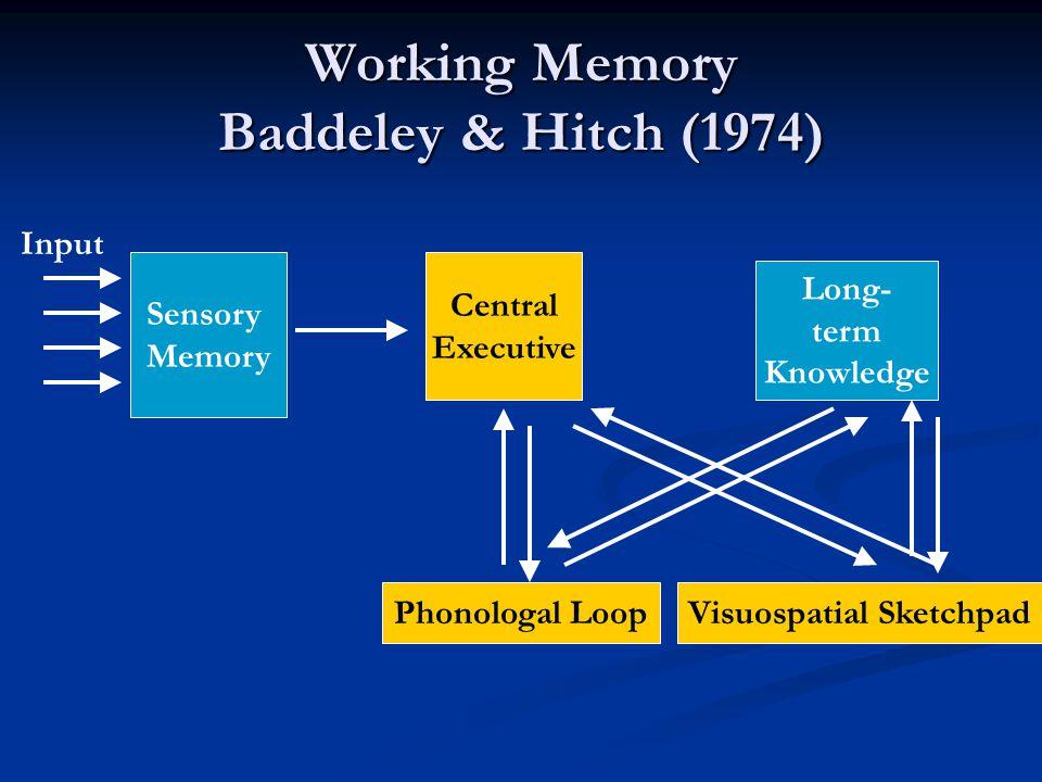 Working Memory Baddeley & Hitch (1974)