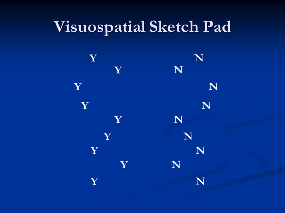 Visuospatial Sketch Pad