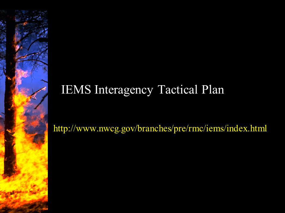 IEMS Interagency Tactical Plan