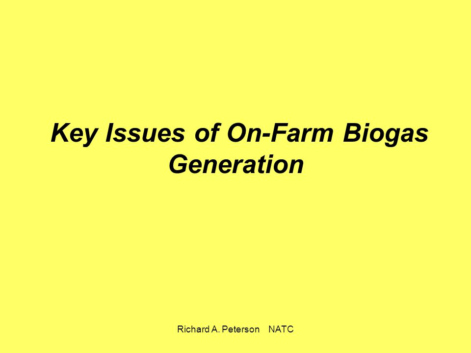 Key Issues of On-Farm Biogas Generation