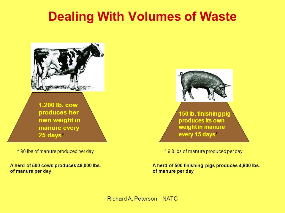 Dealing With Volumes of Waste