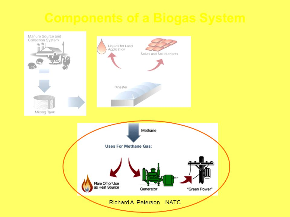 Components of a Biogas System