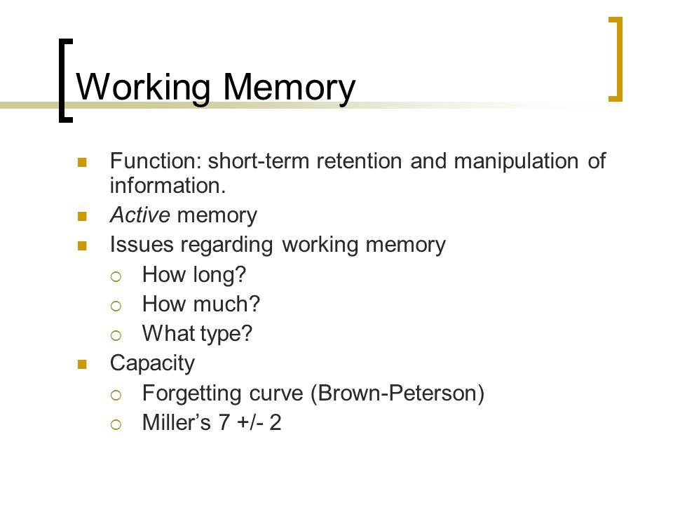 Working Memory Function: short-term retention and manipulation of information. Active memory. Issues regarding working memory.