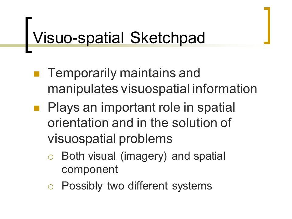 Visuo-spatial Sketchpad